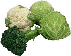 brocoli y colifor entre otras verduras